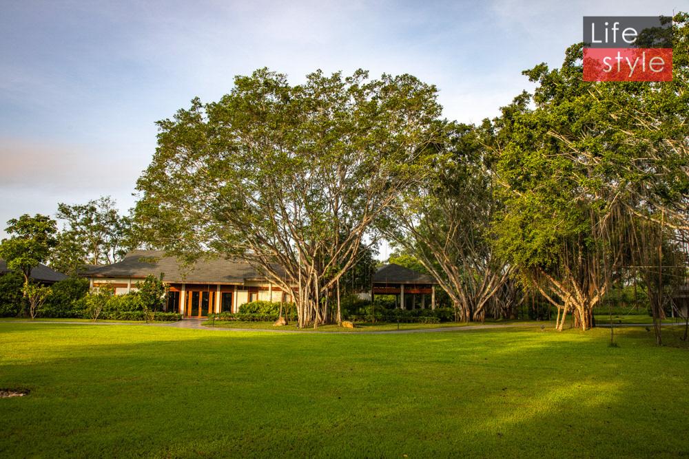 Trải nghiệm 2 ngày 1 đêm Azerai Cần Thơ - Resort nghỉ dưỡng của các sao Việt ảnh 50